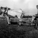 Reinert  med hest bak Stutshaugen (c) Bjorg