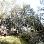 Villingur på tur til Sauagarden